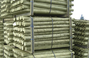 75-100mm Peeled & Pointed Cundy Poles